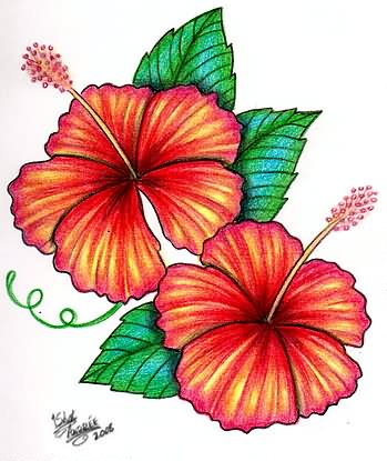 22+ Best Hibiscus Tattoo Designs
