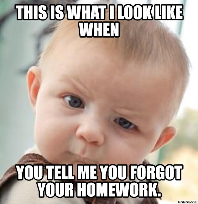 Do Your Homework Meme Patient Centered Focused On Managing Pain