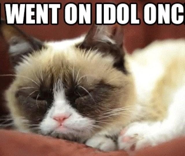 I Went On Idol Once Funny Grumpy Cat Meme Image
