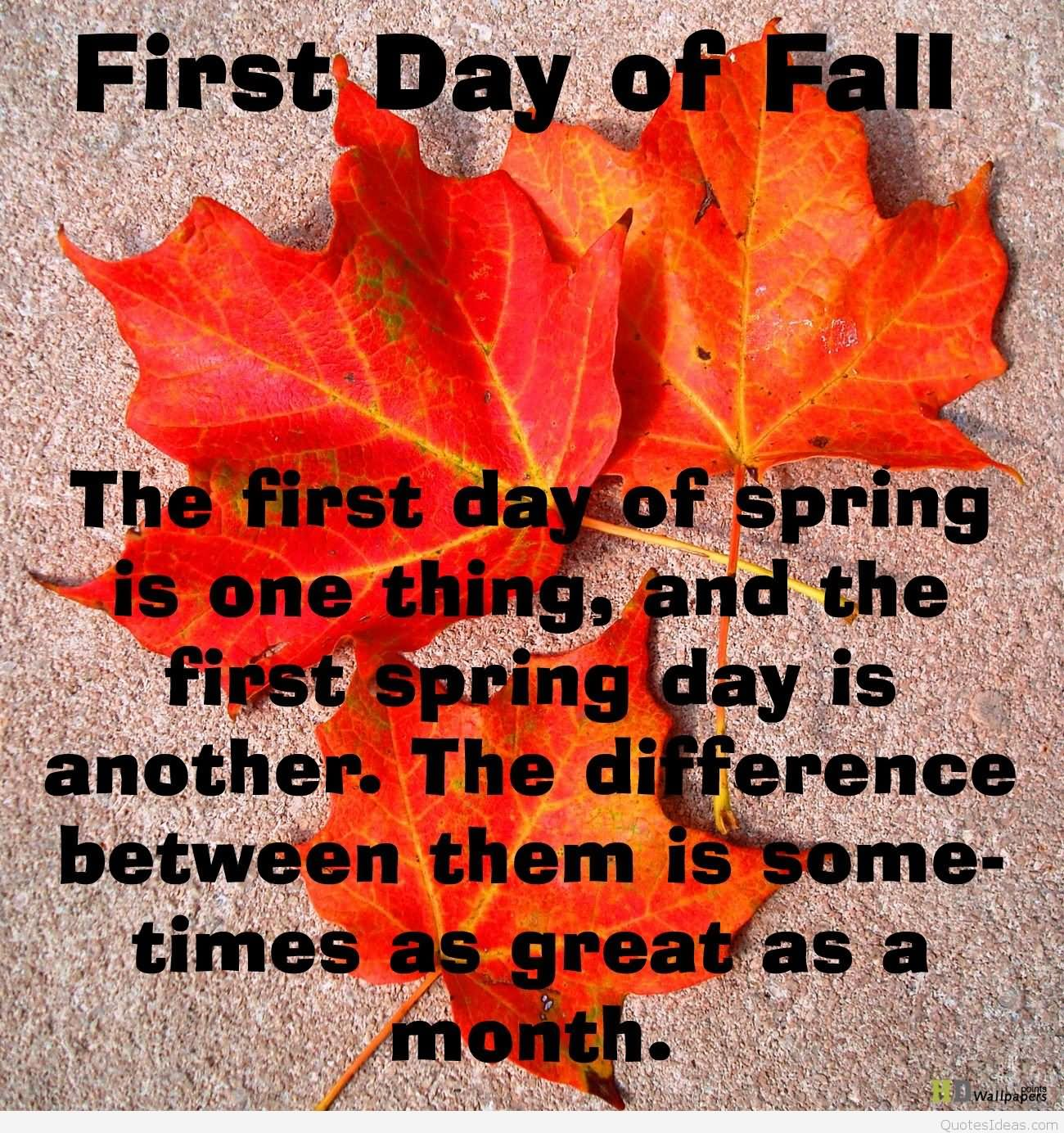 60 Beautiful First Day Of Fall Wishes Images And Photos
