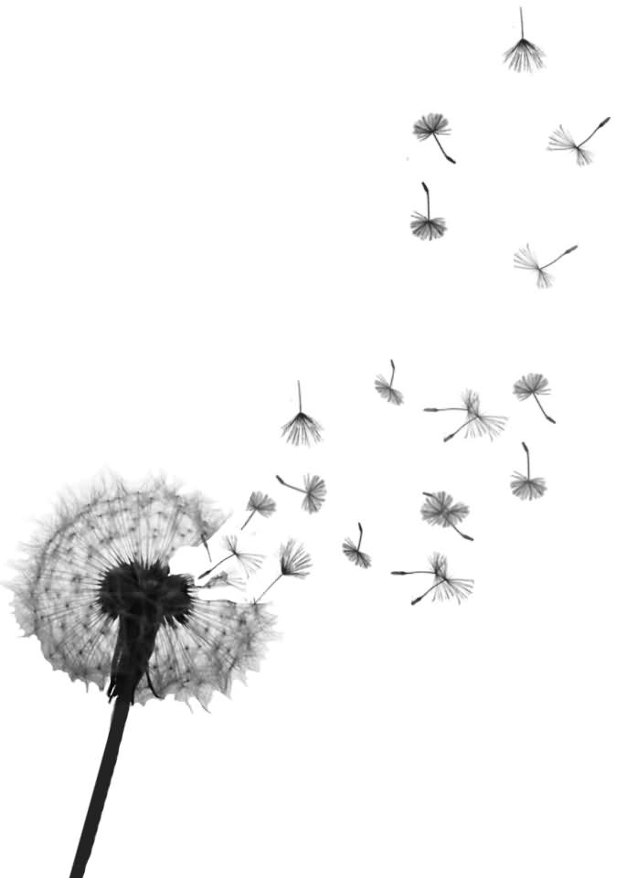 Blowing Dandelions Tattoos Wrist Wind