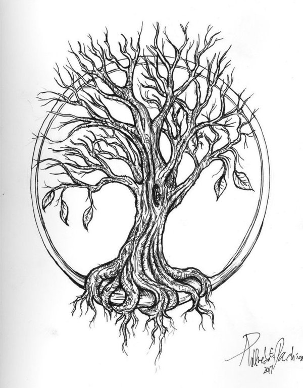 And Black White Coloring Sketches Tree African