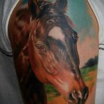 78 Horse Tattoos Meanings And Design Ideas