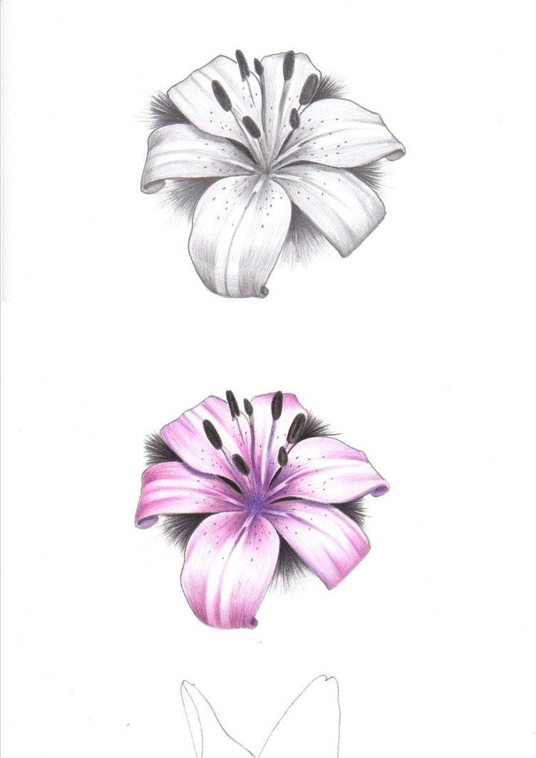 Small purple tiger lily tattoo izmirmasajfo