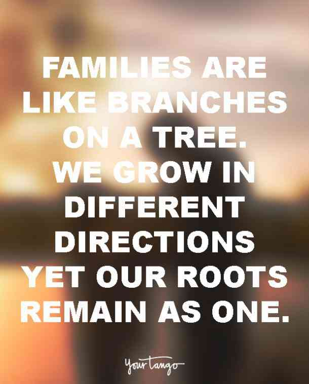 Most Quotes Important Things And Heres Life Are Life About Tree Picture