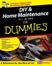 DIY for Dummies Book