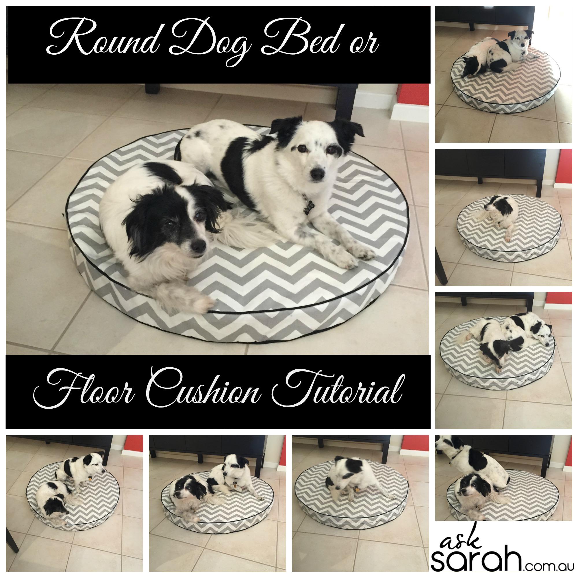 deluxe bed resolutions x mattress comfort w dog com bedrooms beds foam hd buddyrest all memory ultra h