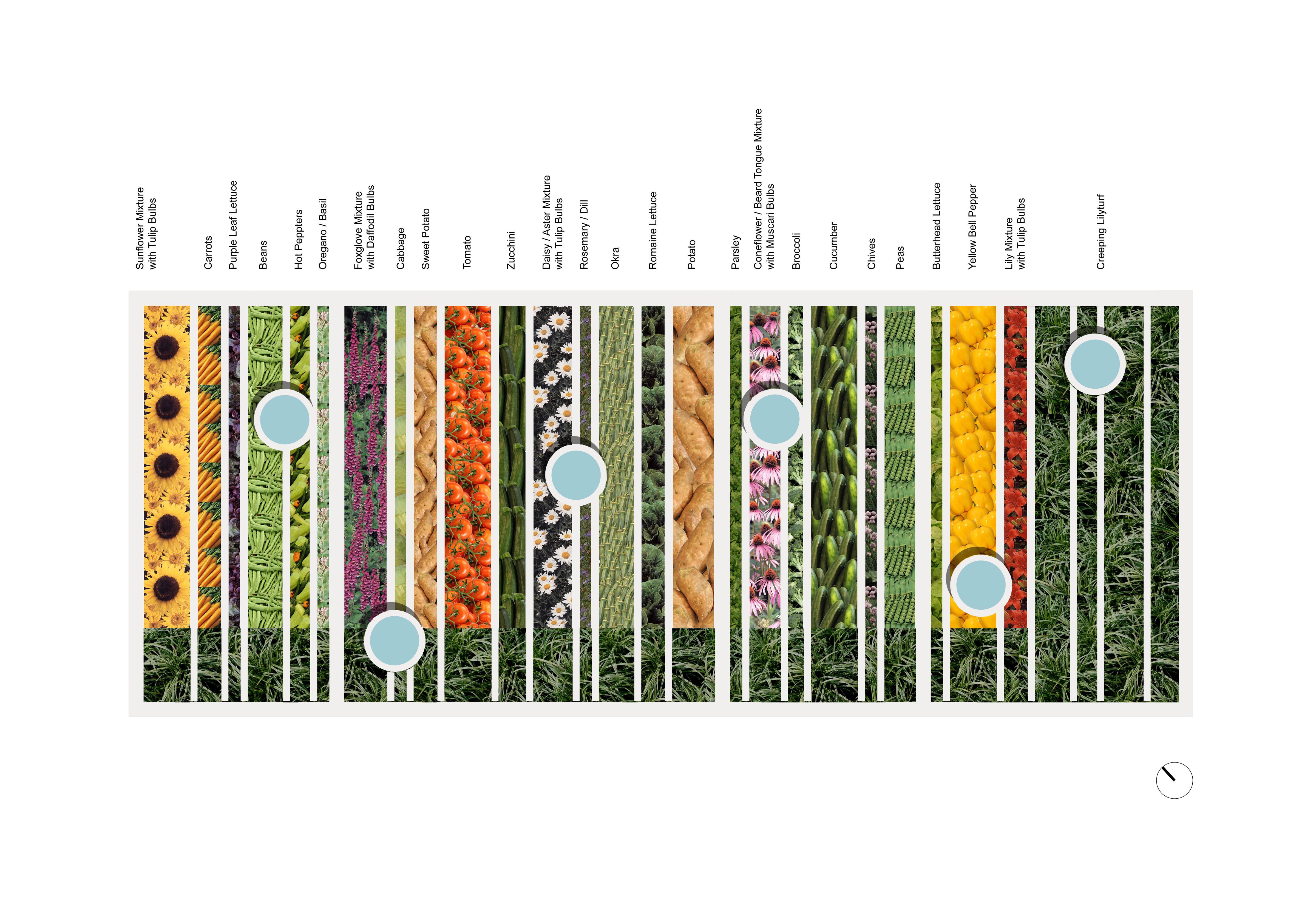 Vegetable Garden Plans For Zone 5