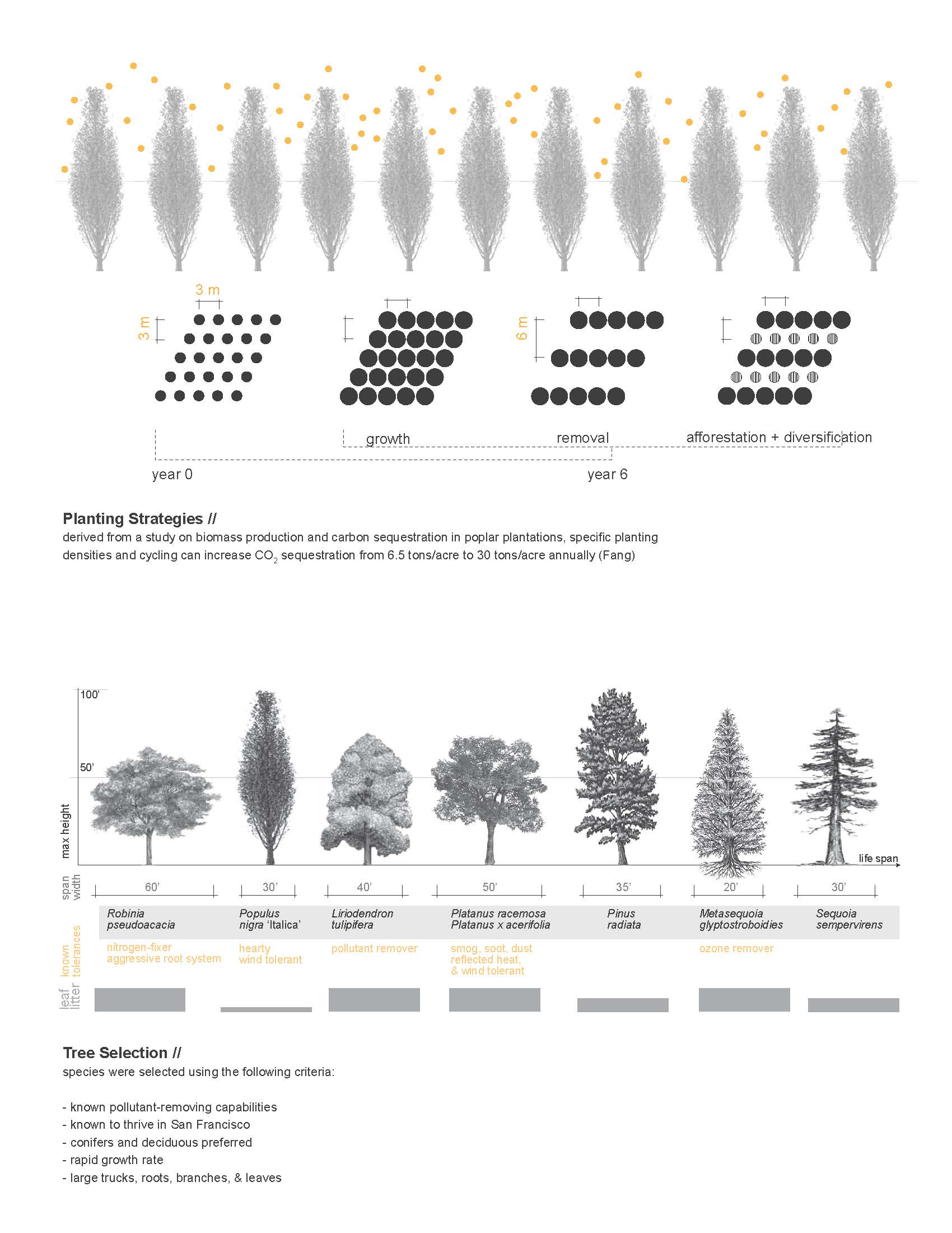 Images About Landscape Architecture Reference On