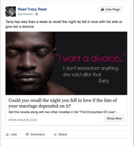 Facebook Ads | Tracy Reed | A Slice of Orange