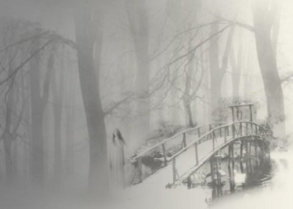 Out of the fog | Jenny Jensen | A Slice of Orange