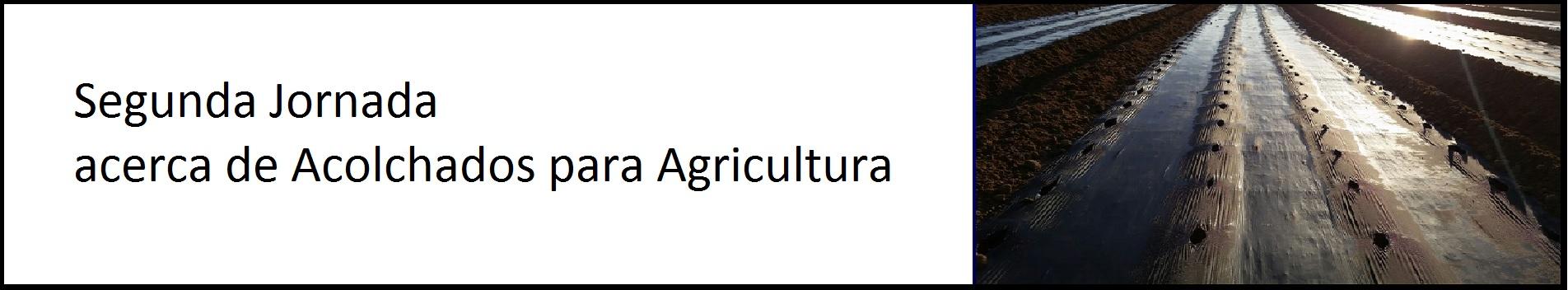 Segunda Jornada acerca de Acolchados para Agricultura