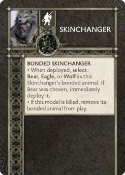 Skinchanger (Verso) US