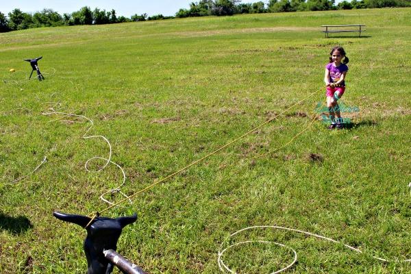 bovay scout ranch activity