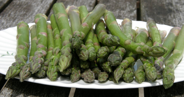 Raw Asparagus spears