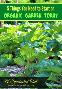 5 Things You Need to Start an Organic Garden Today