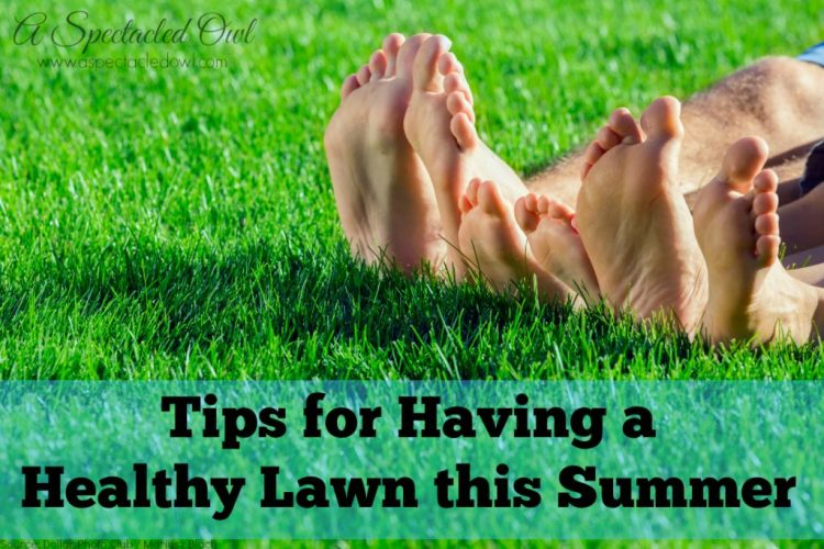 Tips for Having a Healthy Lawn this Summer #LiveLifeOutside #IC AD