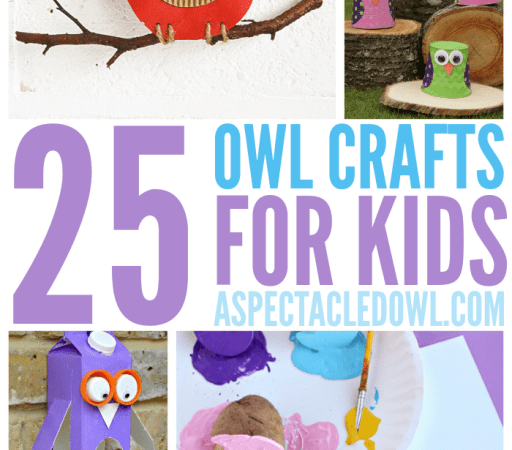 25 Owl Crafts for Kids