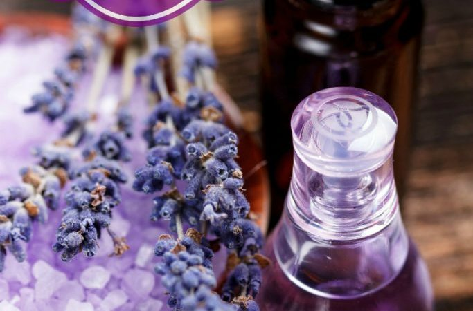 Essential Oil Blends for Stress-Free Living