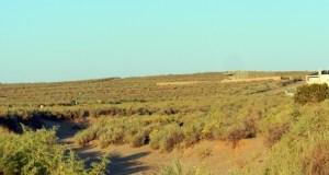 Desert arroyo walk