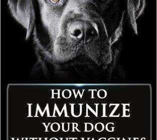 Immunizing NOT Vaccinating