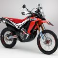 Honda-CRF250-Rally