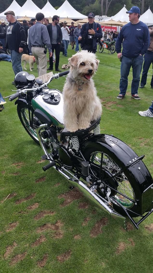 2015-Quail-Motorcycle-Gathering-Andrew-Kohn-172