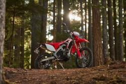 2019-Honda-CRF450L-static--02