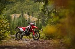 2019-Honda-CRF450L-static--07