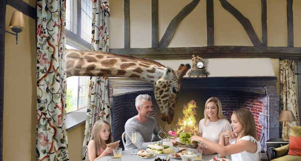 Breakfast with the giraffes at Giraffe Hall in Kent, UK. Artist's impression.