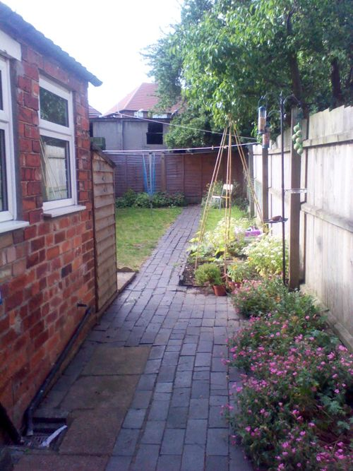 Side garden view with pink flowers and paved path