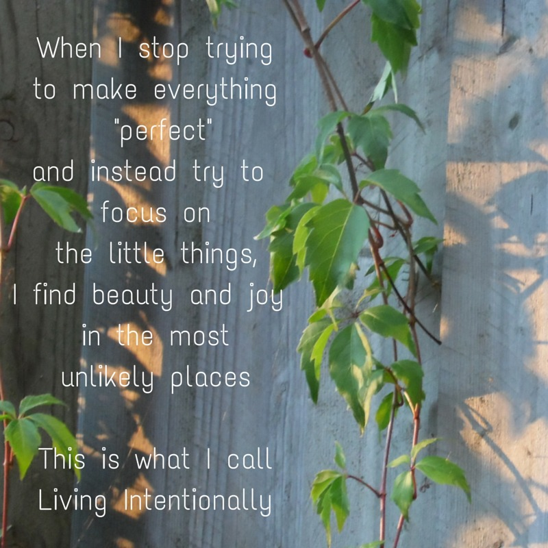 Living Intentionally Quote