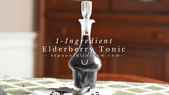 One-Ingredient Elderberry Tonic