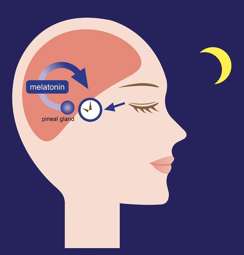 melatoninas kas tai