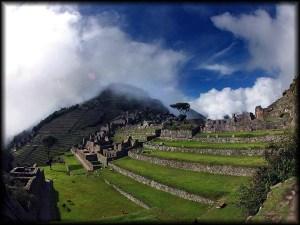 machu picchu hillside