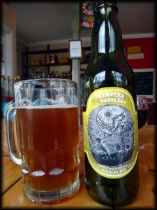 puerto natales beer photo