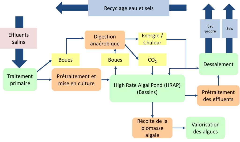 SaltGae - Schéma du traitement des effluents salins