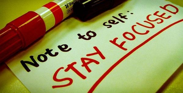 Fokus Blogging