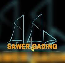 The Sawerigading Institute (TSI)