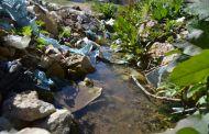 انتشار ظاهرة تلوث المياه.. الخطر الذي يهدد سلامة الكائنات الحية