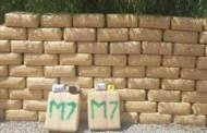 أمن ميناء طنجة يحبط عملية تهريب كمية ضخمة من المخدرات