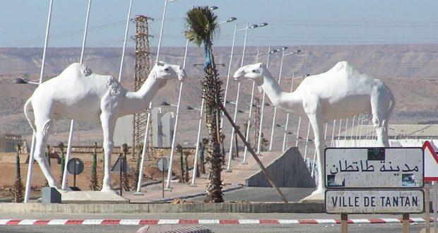 طانطان...إنشاء معهد لمهن البحر و الصحراء