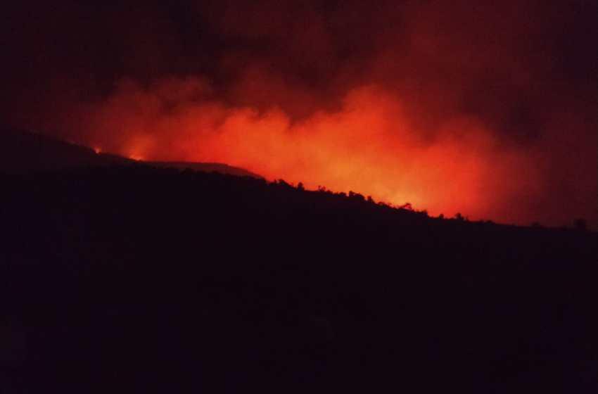 ألسنة النيران تلتهم غابة بإقليم العرائش