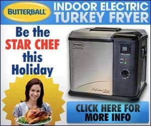 Electric Indoor Turkey Fryer