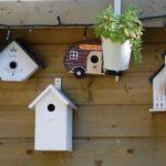 birdhouse-2427.jpg