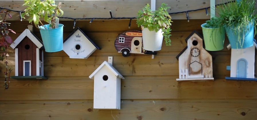 Different shape birdhouses