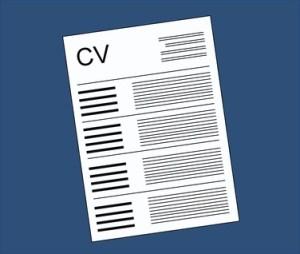professional CV writer