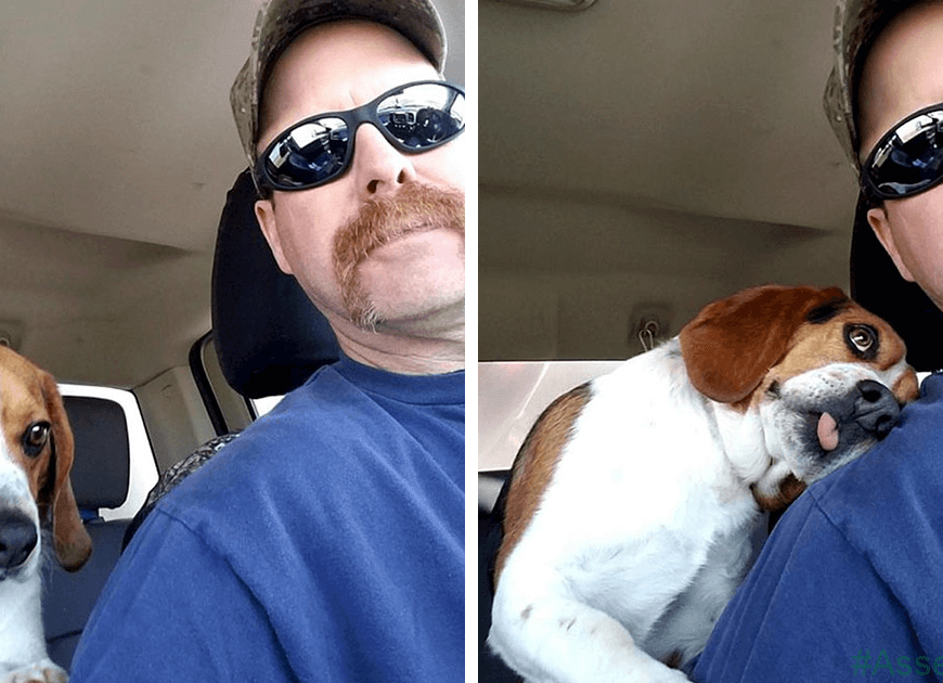 Man Rescues A Beagle From Being Euthanized In A Shelter, The Dog Cant Contain His Gratitude, Hugs His Rescuer