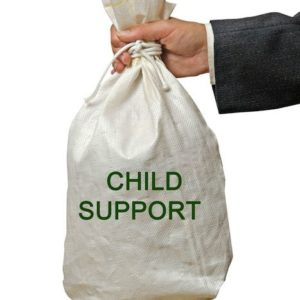 asset searches and collection of child support Asset Searches and Collection of Child Support Child Support 300x300