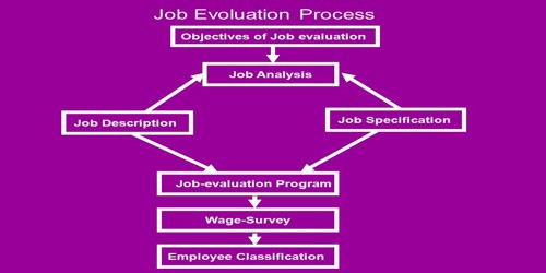 Objectives Of Job Evaluation Assignment Point